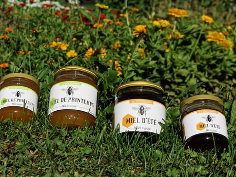 Six bonnes raisons d'acheter du miel suisse.