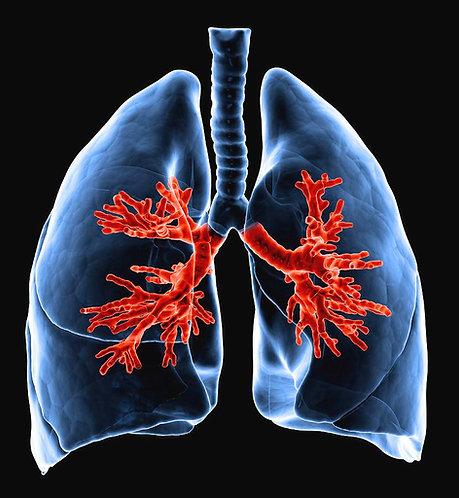 Lung Support Serum