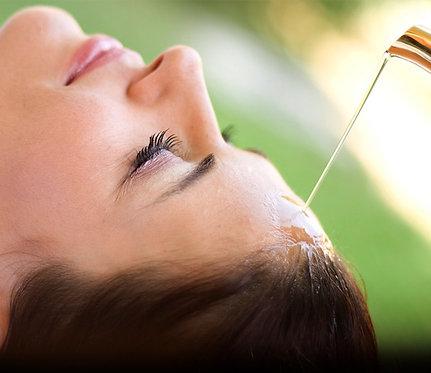 Purification Therapy/ Pancha Karma (11 Days)