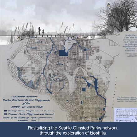 Urban Design Biophilia Study