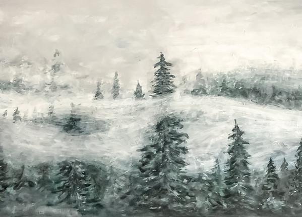 pnw winters