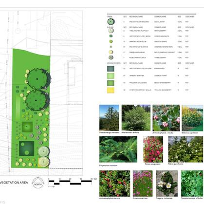 Slope Stabilization Plan, Seattle