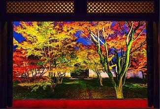 妙覺寺.jpg