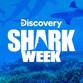 discovery shark week.jpg