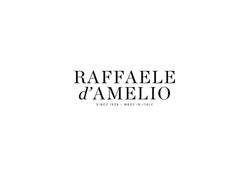 RAFFAELE D'AMELIO.png