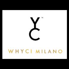 LOGO-WHYCI YC-01.png