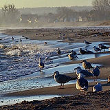 Baltic-Sea-Germany-Haffkrug.jpg