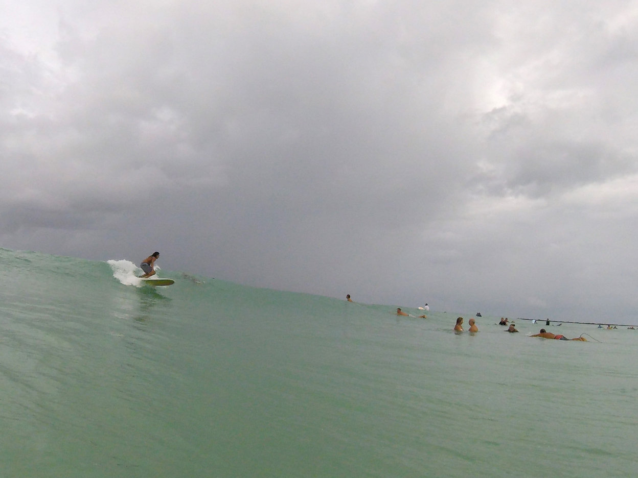 brandon-surfing-log-dorian.jpg