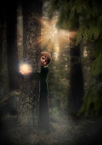 Mitz skogsljus bakom stammen.jpg