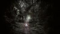Sagan om skogsljuset som blev stulet -