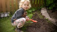 En fyraåring i min trädgård