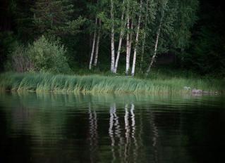 En bild - från Dalarna