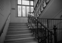 Dr Freuds trappa i Wien