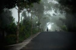 Yalan - road in Bali
