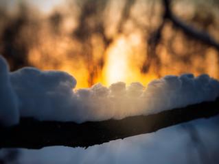 Vinterljus