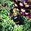 Thumbnail: Pendentif flacon œil de tigre