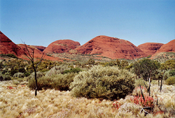 australie089.png
