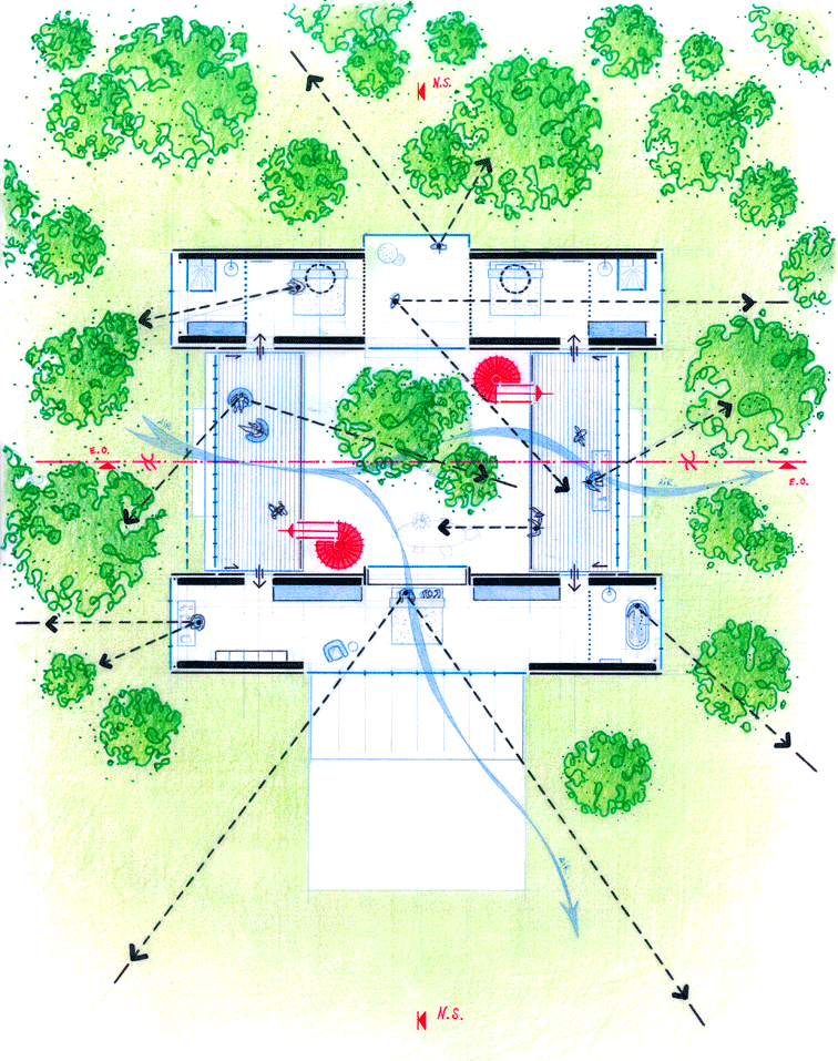 Maison_Margaux002_Plan-Feuillage.png