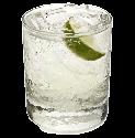 gin sponsor.png