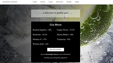Waggon & Horses - Gin Selection