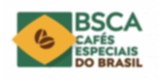 certificado bsca