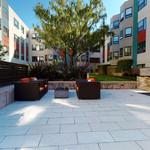communitygallery_zen-garden-03262020_164