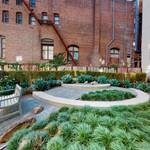 communitygallery_zen-garden-03262020_160