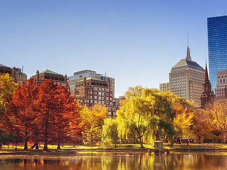 It is October! Walking Tours in Boston to see the beautiful Fall Foliage