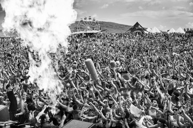 Veld Music Festival - Client Ink Entertainment