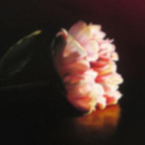 Schilderij Debora Makkus Petals III, pioenroos. Realistic painting of peony