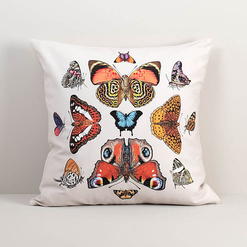 Butterfly Symmetry Pillow Cover