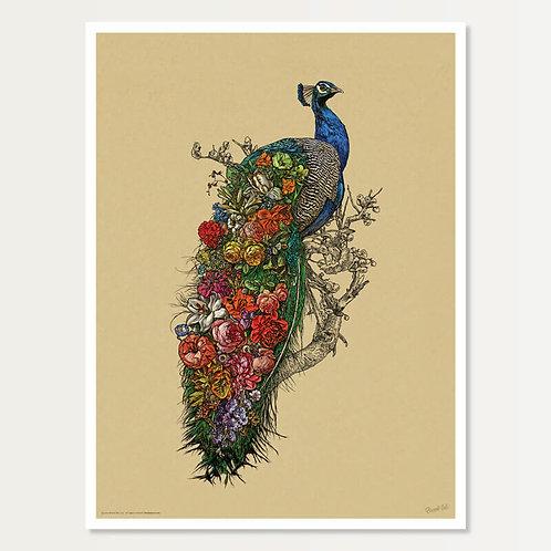 Peacock's Garden Art Print 18x24