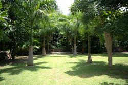 34-garden