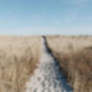 A Conscious Soul Path