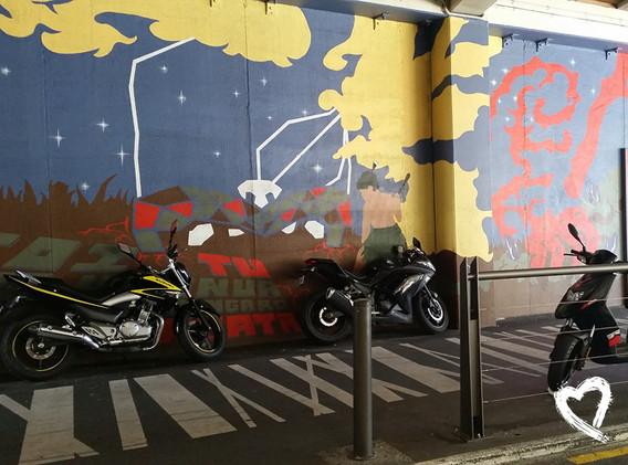 Wellington by Amanda Sears38.jpg