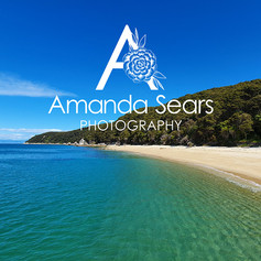 Photography by Amanda Sears