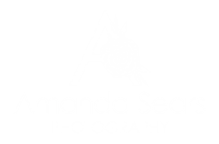 A Sears Photography Logo-15 (Medium).png