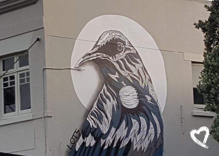 Other NZ Street Art by Amanda Sears35.jp