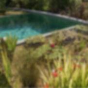 CB - Natural Pools NZ