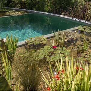 CB - Natural Pools NZ