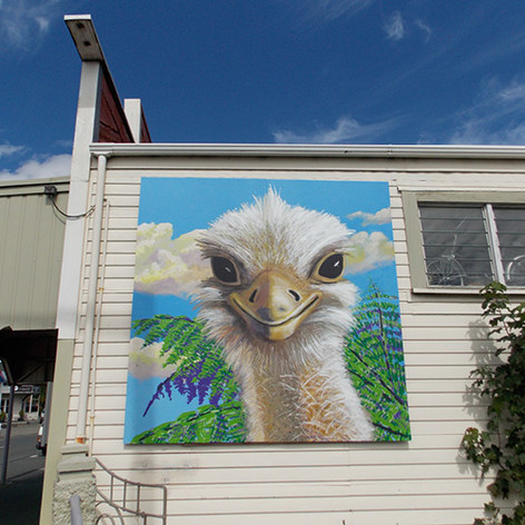 Tasman by Amanda Sears48.jpg