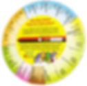 Change 4 Life Alcohol Wheel