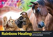 Rainbow Healing Leaflet