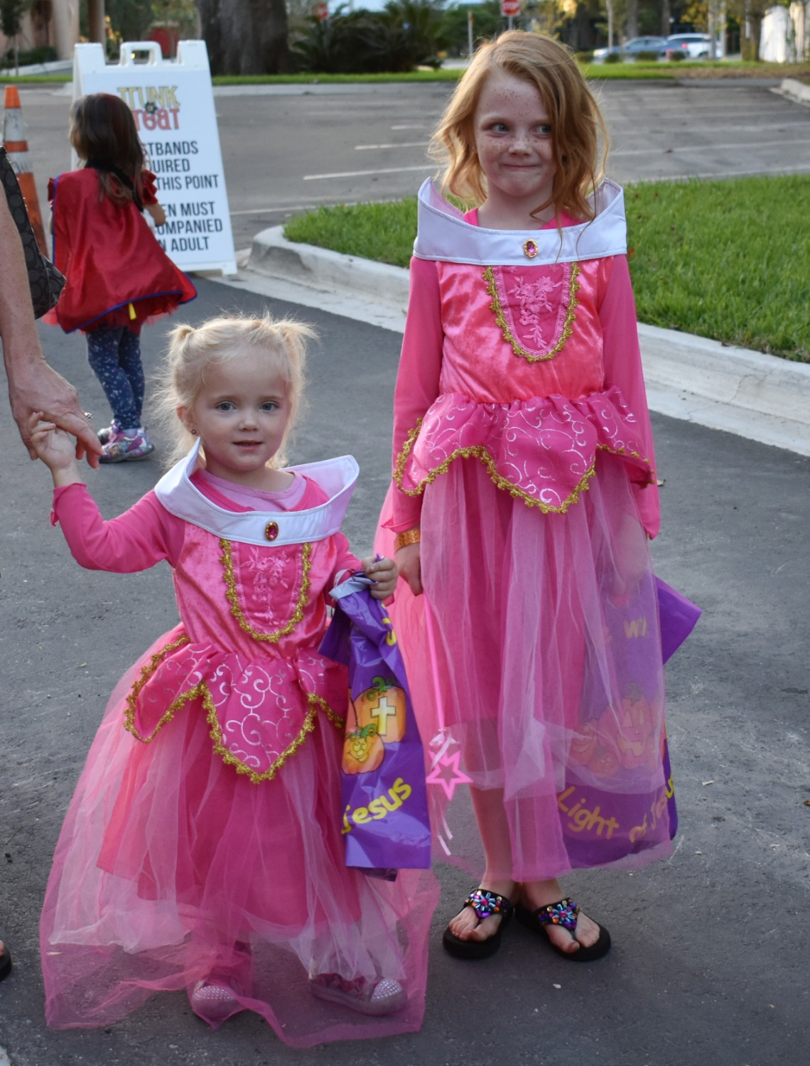 Two Little Princesses