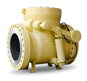 Check Valve with Damper.png