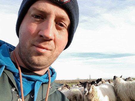 Meet Jonny Mattacola – a master of both the mulish teenager and the North of England Mule sheep!