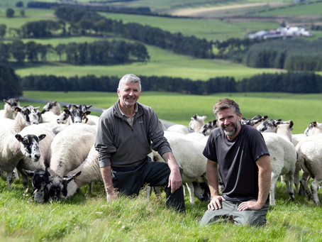 Why running the Rolls Royce of the sheep sector is such a pleasure