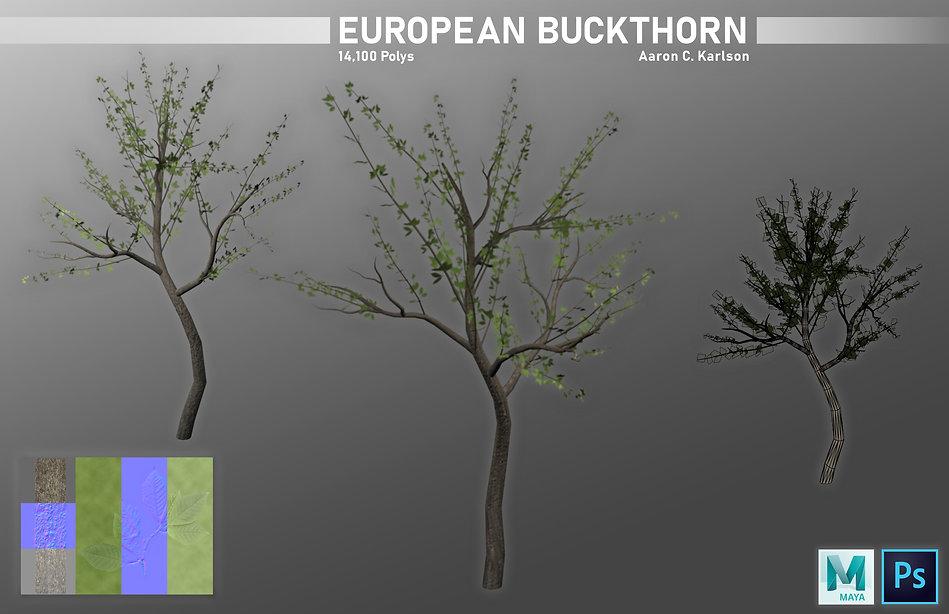 karlsona_project_e_part_2_European_Buckt