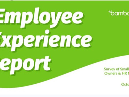 EMPLOYEE EXPERIENCE REPORT