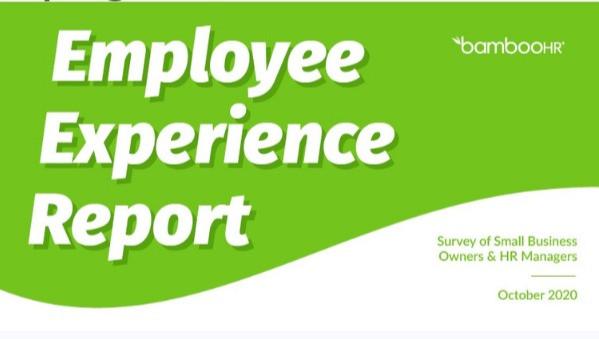 EMPLOYEE EXPERIENCE REPORT